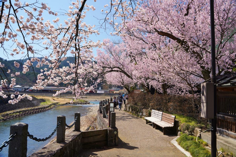 Overlooking the Miyagawa River behind Shinshuji