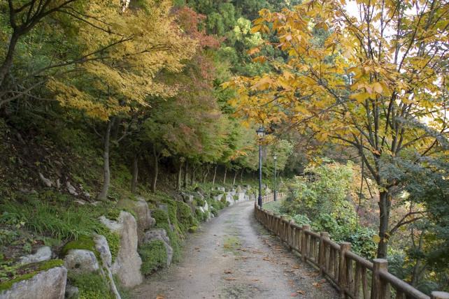 Fujinami Hatcho Footpath