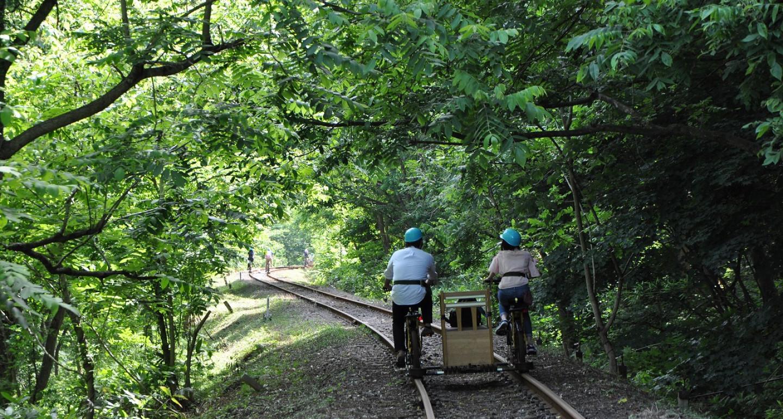 Rail Mountain Bike: Gattan Go